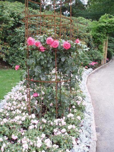 Rosestativ