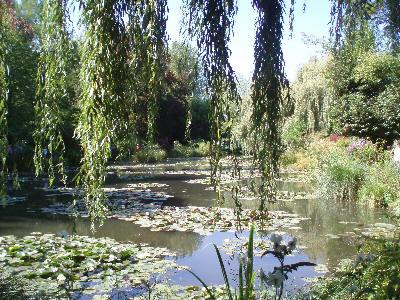 Den kjente dammen i Monets hage