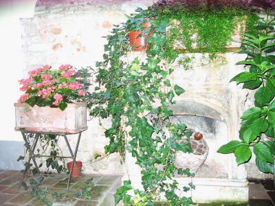 Miljøbilde fra Firenze