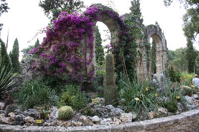 Gamle ruiner, murer og vakre planter