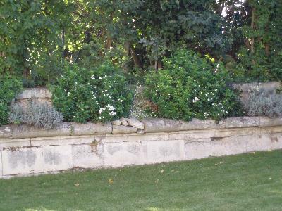 Vakker hagemur i Saint-Germain-en-Laye