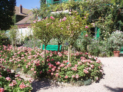 Roser i Monets hage