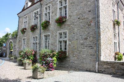 Blomsterkasser i alle vinduer