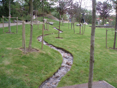 Vann i gress