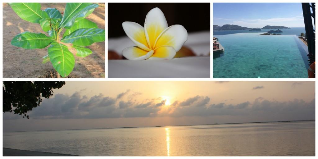 Noen idèer fra Maldivene og Thailand