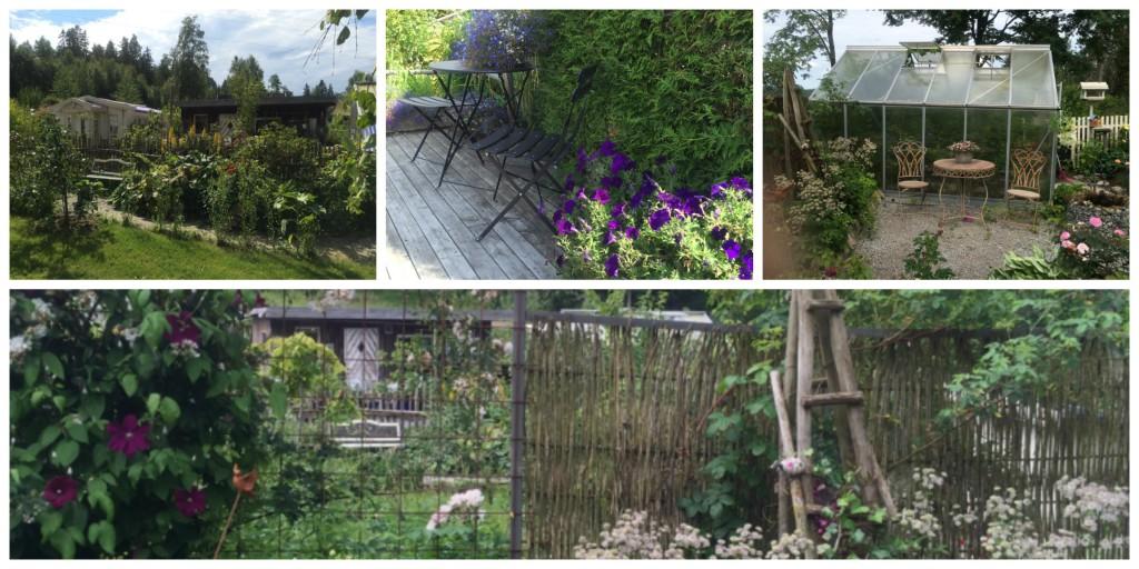 Med rom i hagen